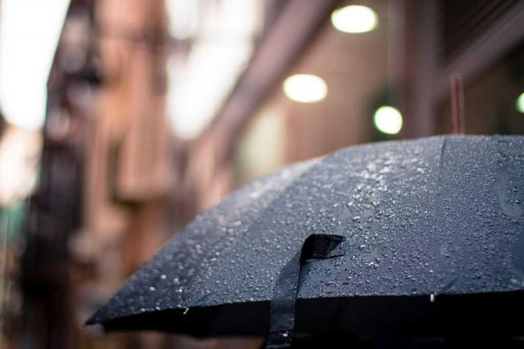 Muson kerap membawa hujan yang deras kepada daerah India Barat dan Afrika Timur yang sangat kering.