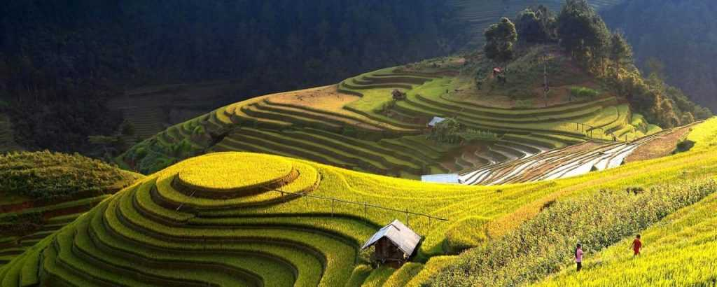 Sistem Informasi Geografis dapat membantu kita menentukan tutupan lahan suatu wilayah tanpa harus kesana