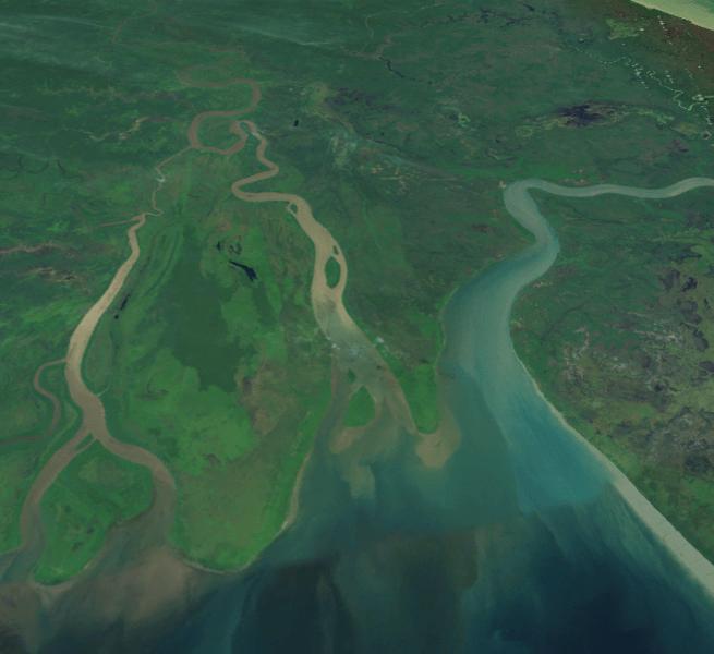 Sungai Digul membawa banyak sedimen sehingga warna airnya kuning kecoklatan