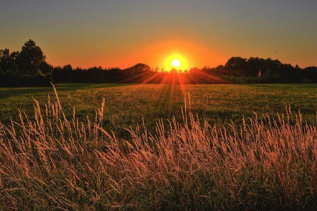 Terbit dan tenggelamnya matahari merupakan salah satu dampak dari gerak semu harian matahari