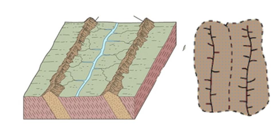 Pola Aliran Sungai Trellis