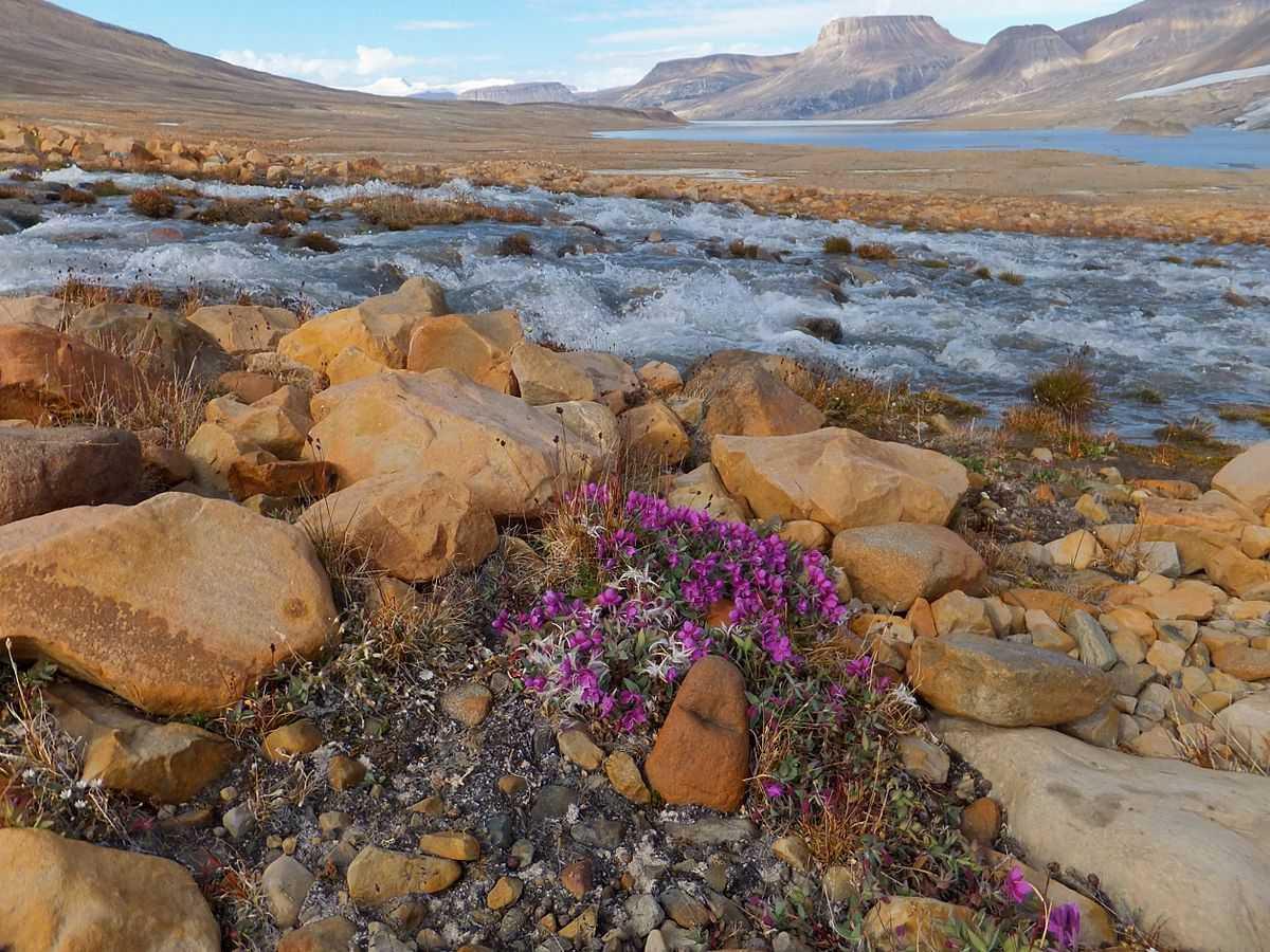Pulau Ellesmere merupakan pulau terbesar ke 10 di dunia
