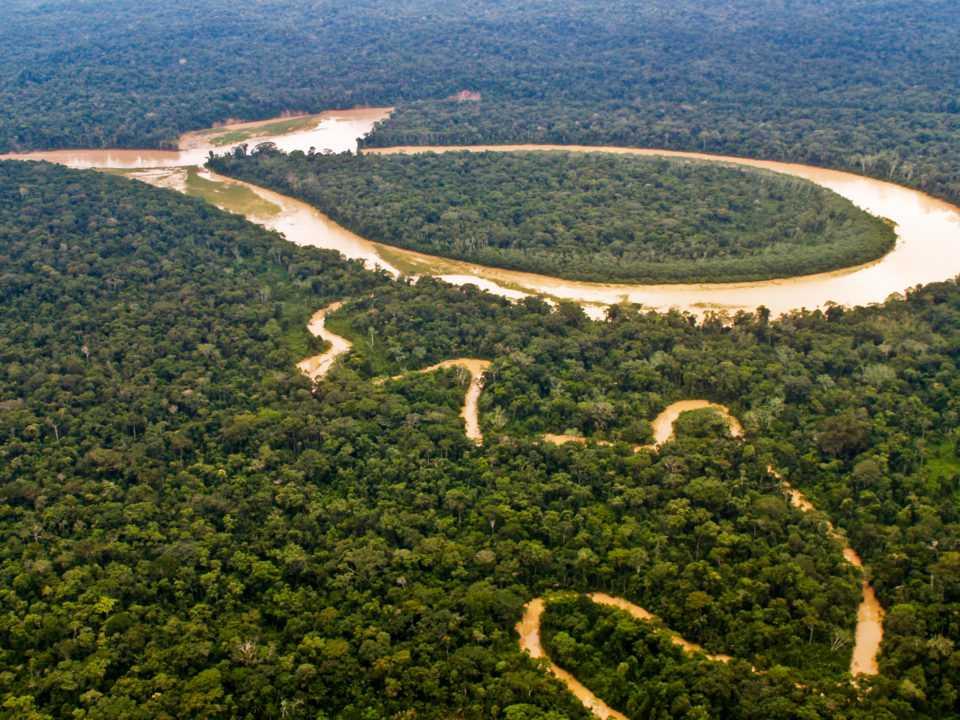 Kerapatan vegetasi mempengaruhi kepadatan penduduk