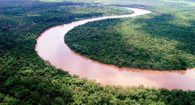 Sungai Pulau merupakan sungai terpanjang di Papua yang masuk kedalam wilayah Indonesia