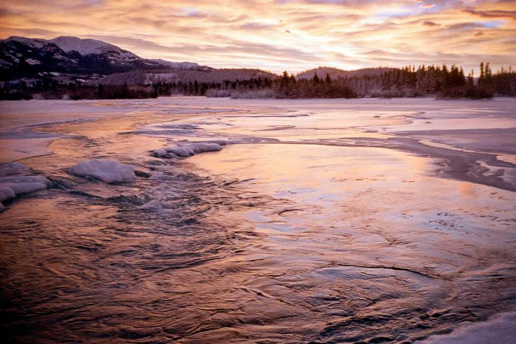 Sungai Yukon sangat kaya akan sumber daya alam hayati seperti ikan Salmon yang menjadi santapan masyarakat sekitar
