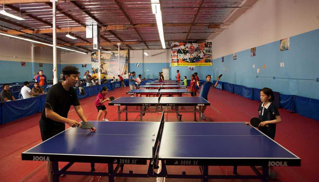 Pingpong berasal dari Inggris sebagai versi kecil dari permainan tenis