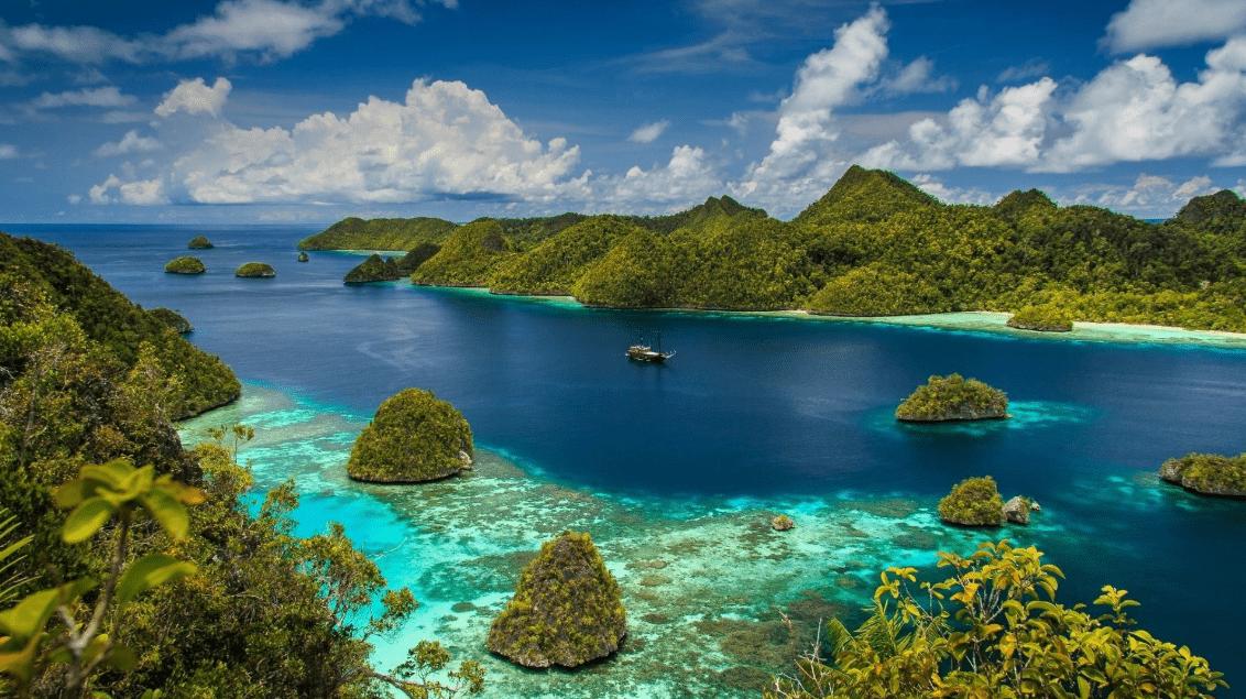 Persebaran Flora Dan Fauna Di Indonesia Insan Pelajar