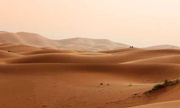 Deflasi adalah salah satu jenis erosi yang umumnya ditemukan di daerah gurun