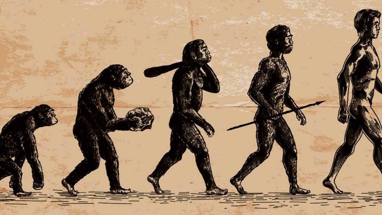 Manusia Pendukung Kebudayaan Pacitan