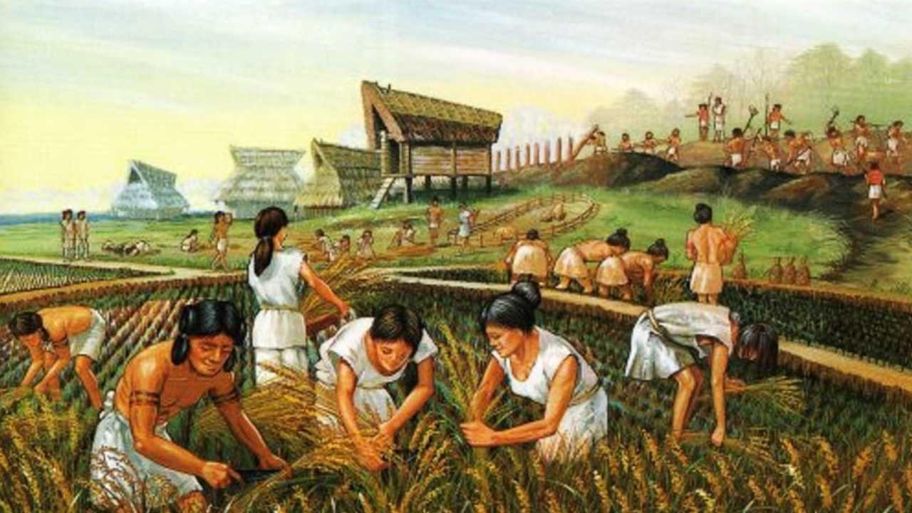 Terjadi perkembangan pertanian dan juga produktivitas manusia pada zaman besi