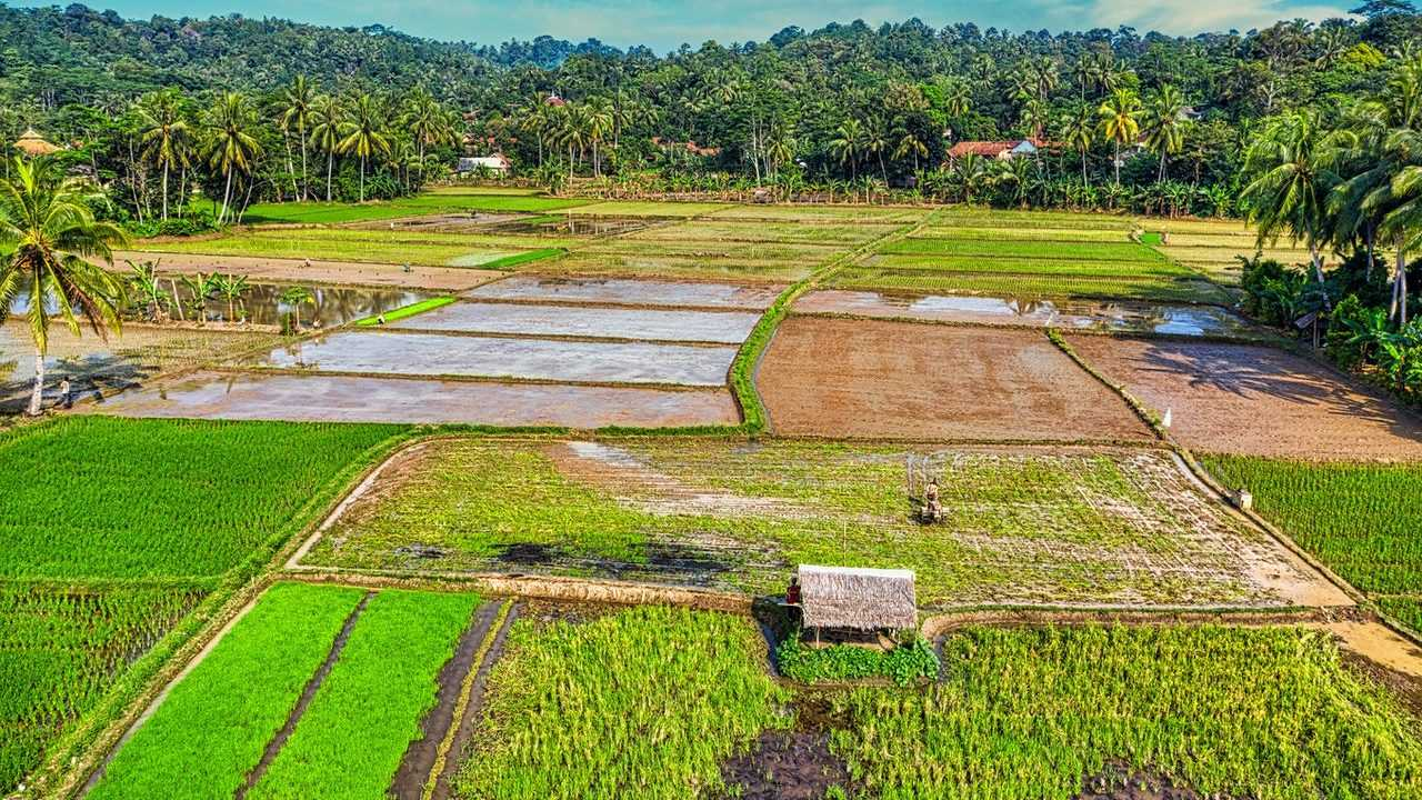 Pembangunan irigasi merupakan salah satu arahan politik etis